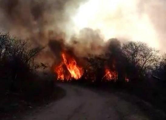 FIGO-MONTEIRO Fatores climáticos e queimadas são preocupações da prefeita Anna Lorena