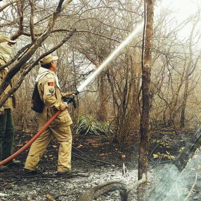 INCENDIO-MONTEIRO-2-400x400 Incêndio na zona rural de Monteiro é controlado