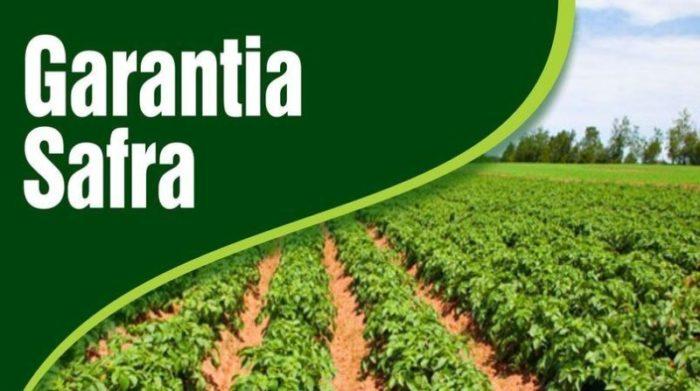 garantia-safra-700x391 Agricultores de Monteiro começam a receber o Seguro Safra 2018/2019