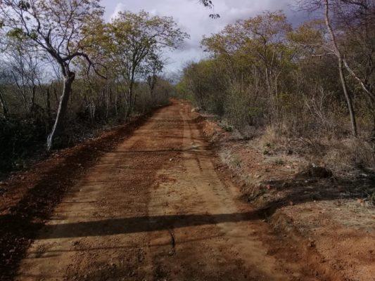 MONTEIRO-Prefeitura-inicia-2020-recuperando-estradas-da-zona-rural-2-1-533x400 MONTEIRO: Prefeitura recupera mais seis estradas da zona rural e melhora mobilidade para o homem do campo