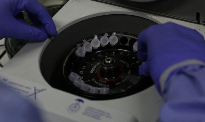 viru-brasil-669x400 Número de casos suspeitos de coronavírus no Brasil é de 132
