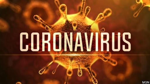covid-sertaia Coronavírus na PB: 144.378 casos, 3.276 mortes e 114.202 recuperados