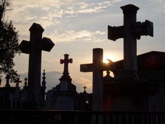 cruz1-533x400 Brasil não chegará a 100 mil mortos, diz Ministério da Saúde