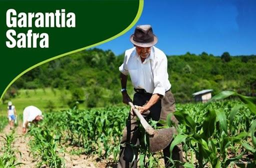 img_202003191155SmuG GARANTIA SAFRA: Agricultores de Monteiro podem fazer consulta online do Programa Garantia-Safra 2020