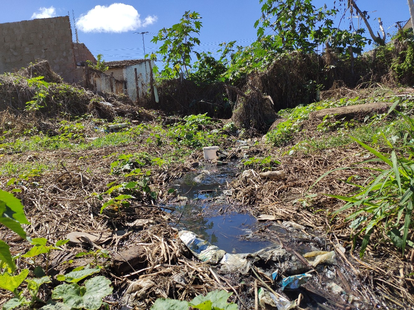 1_IMG_20200723_092742 Moradores de Monteiro denunciam esgoto despejado nos rios Paraíba e São Francisco.