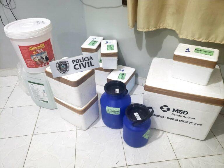 121651436_3676177605727111_7043377988353574923_n-768x576-1 Polícia Civil de Monteiro recupera carga roubada avaliada em R$ 200 mil na cidade do Congo