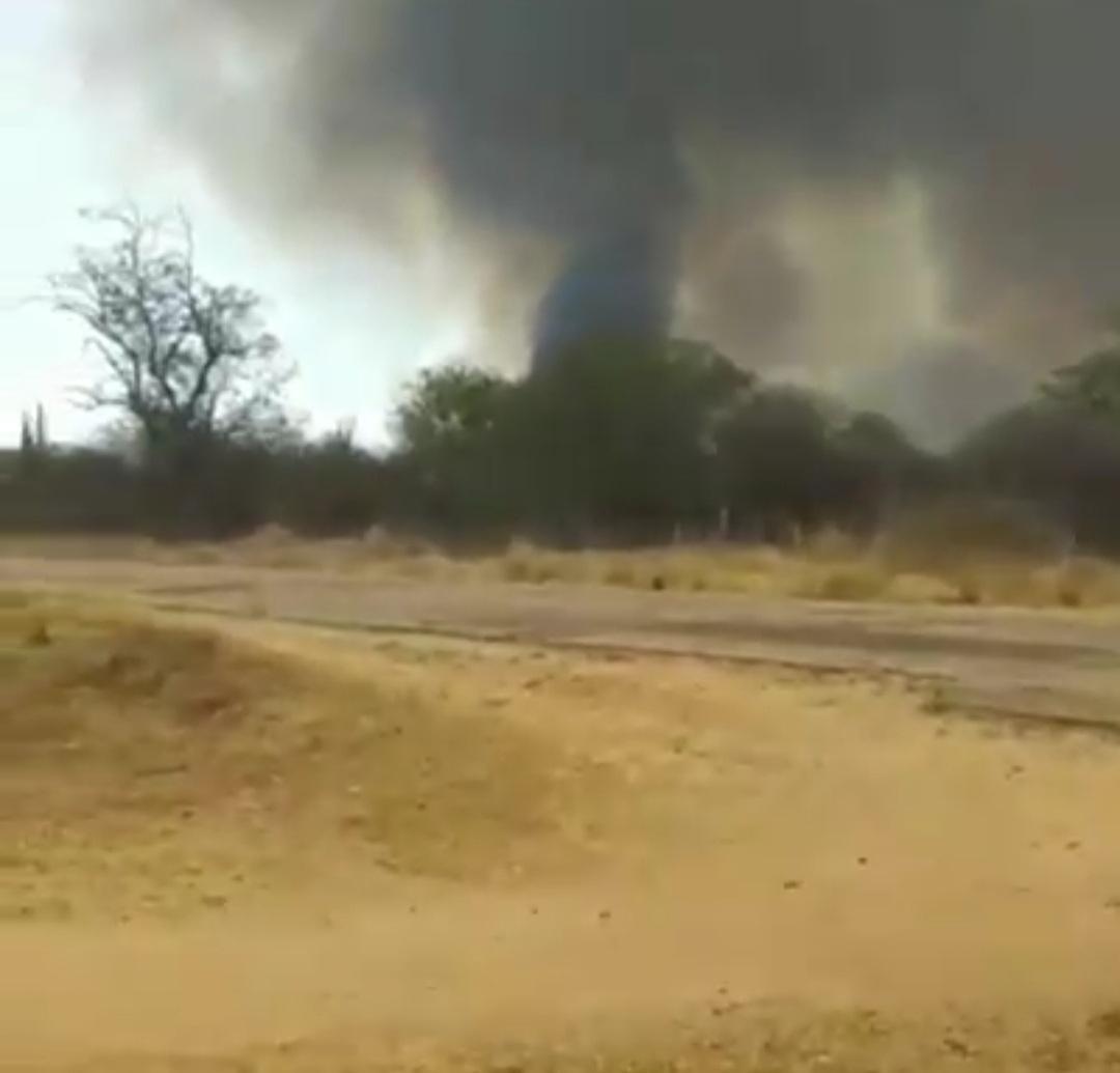 IMG_20201011_215701 Incêndio destrói vegetação e mata animais silvestres no município Sertânia