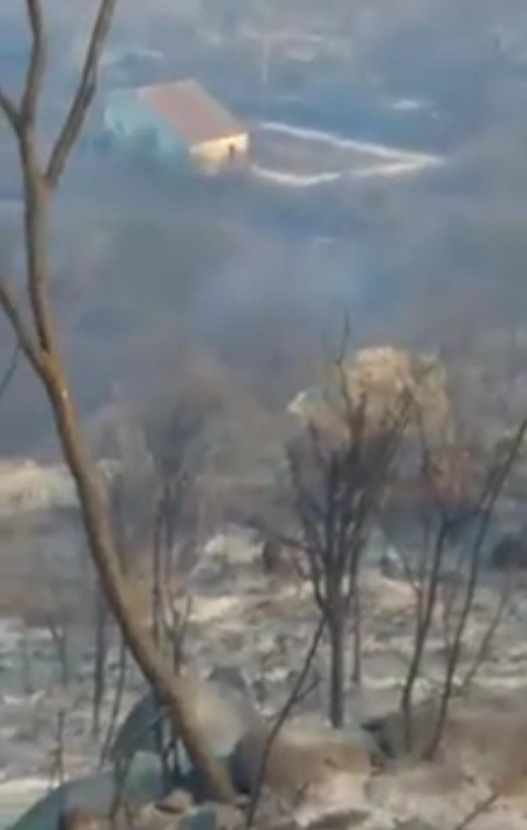 IMG_20201011_215719 Incêndio destrói vegetação e mata animais silvestres no município Sertânia