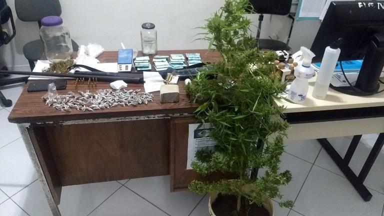 bf723079-7d87-43d9-b5fd-cfc6bc589cc5 Polícia prende dois e encontra pé de maconha com 1 metro de altura em casa de investigado na PB
