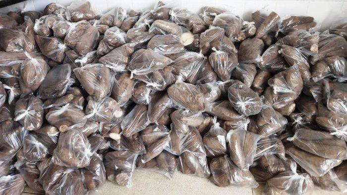 Verduras2-700x394 Prefeitura de Monteiro distribui produtos da Agricultura Familiar em parceria com o Governo do Estado
