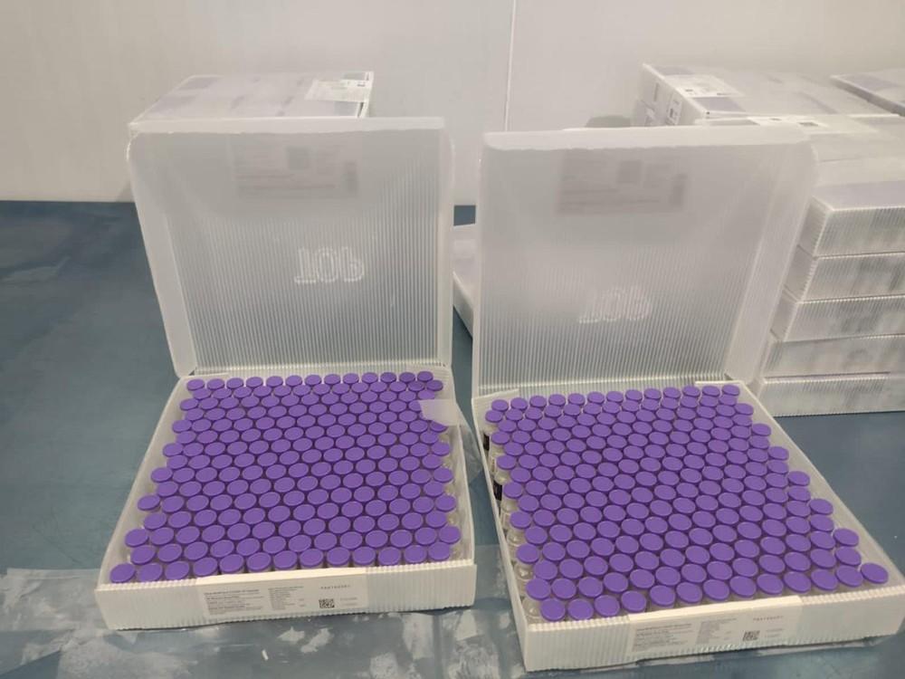 pfizer Paraíba recebe nesta sexta-feira (13) mais 91.140 doses de vacina contra a Covid-19