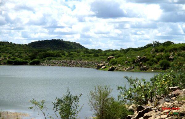 5534863982_926b60a1db_b-600x387-1 Homem morre afogado em açude na cidade de Camalaú