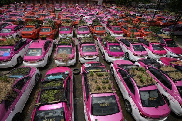 ap21259322746832-600x400 Táxis tailandeses viram hortas após queda na demanda durante pandemia